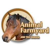 Animal Farmyard and Tea Garden