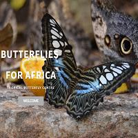 Butterflies for Africa